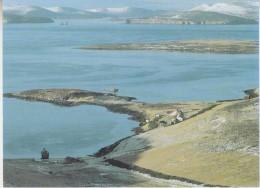 Falkland Islands The Settlement At New Island  Postcard Unused (33327) - Falkland Islands