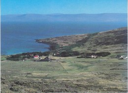 Falkland Islands Settlement At Carcass Island  Postcard Unused (33331) - Falkland Islands
