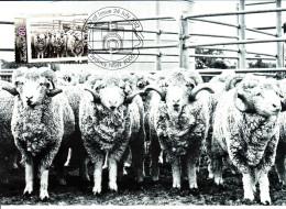 Australia 2012 Maxicard Scott #3735 60c 'The Godfathers' Photographs Of Life In Australia First Day Issue - Cartoline Maximum