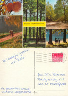 Dedemsvaart, Overjissel, Netherlands Postcard Posted 1984 Stamp - Dedemsvaart