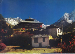 COLOUR PICTURE POST CARD PRINTED IN NEPAL - THYANGBOCHE MONASTRY - BUDDHISM THEME - ROYAL NEPAL AIRLINES - Maldives