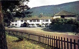CUMBRIA - KESWICK - BASSENTHWAITE - PHEASANT INN - 3 DIFFERENT CARDS  Cu1124/26 - Cumberland/ Westmorland