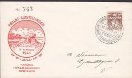 Denmark Sonderstempel  KØBENHAVN 1941 Cover Brief National Frimærkeudstilling Stamp Exhibition - 1913-47 (Christian X)