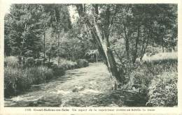 GRAND-HALLEUX-sur-SALM - Un Aspect De La Capricieuse Rivière Où Frétille La Truite - Vielsalm