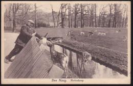 Den Haag, Hertenkamp (00133) - Den Haag ('s-Gravenhage)