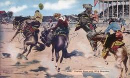 Cowboy Race With Wild Bronchos - Rodeo - Carte Envoyéé De Cheyenne - Denver