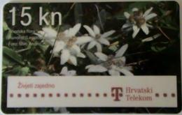 CROATIA - Flowers (Leontopodium Alpinum), T Telecom Telecard 15 Kn, Exp.date 12/13, Used - Kroatien