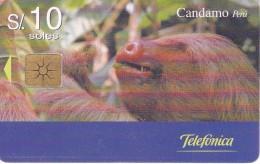 TARJETA DE PERU DE UN PEREZOSO (CANDAMO) - Sin Clasificación