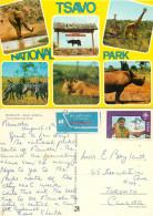 Wild Animals, Tsavo National Park, Kenya Postcard Posted 1982 Stamp - Kenya