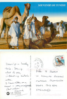 Camels, Tunisia Postcard Posted 2004 Stamp - Tunisia