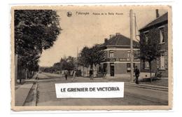 CPA - Paturages - Avenue De La Belle Maison - Café Club Du Clos Des Loups - Colfontaine