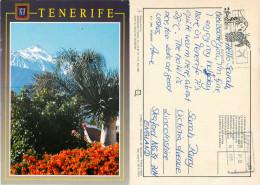 El Teide, Tenerife, Spain Postcard Posted 1990s Private Post Via Brussels - Tenerife