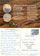 Sand Dollar, Florida, United States US Postcard Posted 1997 Stamp - Non Classés
