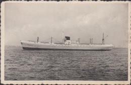 Doel Schelde Dijk Haven Scheepvaart Boot Vessel Boat SS Wendover Beveren Waas - Beveren-Waas