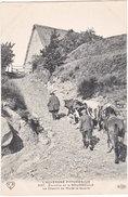 63. Environs De LA BOURBOULE. Le Chemin De Murat-Le-Quaire. 4567 - Autres Communes