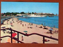 1 Cp Brindisi La Spiaggia Di S Apollinaire - Brindisi