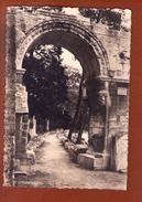 1 Cp Arles Les Alyscamps Et Allee Des Sarcophages - Arles