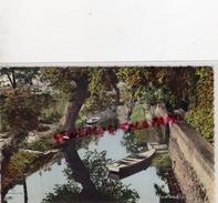 77 - MELUN - LES BORDS OMBRAGES DE L' ALMONT A PROXIMITE DE LA PLACE SAINT JEAN - Melun