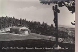 P62409 CEPPETO PRATO - Prato