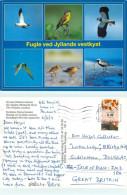 Birds, Denmark Postcard Posted 2011 Stamp - Denmark