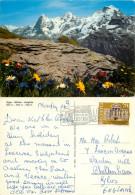 Eiger Monch Jungfrau, BE Bern, Switzerland Postcard Posted 1980 Stamp - BE Berne