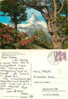 Matterhorn, Zermatt, VS Valais, Switzerland Postcard Posted 1982 Stamp - VS Valais