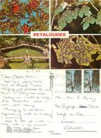 Petaloudes, Rhodes, Greece Postcard Posted 1983 Stamp - Grecia