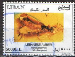LIBANO - 2002 - AMBRA LIBANESE - 136 MILIONI DI ANNI - USATO - Libano