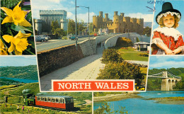 North Wales, Wales Postcard Unposted - Pays De Galles