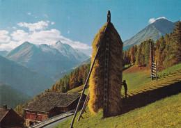 GROBGLOCKNER-HOCHAPENSTRABE N°  162 (DIL82) - Austria