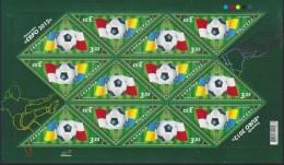 Ukraine, 2007, Mi. 917, Y&T 841, Sc. 702, European Football Championships, MNH - Ukraine