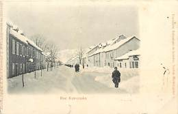 PIE-16-P -1817 : RUE KATOUNSKA  EXPOSITION BALCANIQUE  SECTION MONTENEGRINE - Montenegro