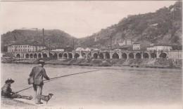Isère : VIENNE : Vue Viaduc  A   Estressin ( Pêche) - Vienne