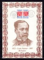 """FRANCE 1987 : Encart 1er Jour N°té / Soie Rare (807/1500) Edit° A.M.I.S."""" LOUIS PASTEUR """". 2 X N°YT 2496. Parf état. FDC - Louis Pasteur"""