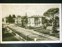 VENETO -TREVISO -CONEGLIANO -F.P. - Treviso