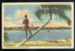 Cpa  Antilles Bahamas Nassau From Hog Island   JIP48 - Bahamas