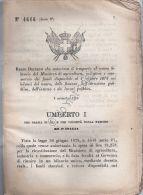 Regio Decreto 1878 - Umberto I Bilancio Dello Stato 1878 - Vecchi Documenti