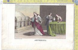 Litografia A Colori - Artemisia  - .XIX  Secolo - Incisioni
