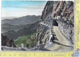 Cartolina - Postcard -  Monte Pasubio - Strada Degli Eroi - 1958 - Non Classificati