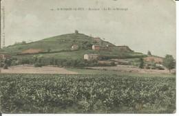 St ROMAIN LE PUY  Le Pic De Monsupt - Andere Gemeenten