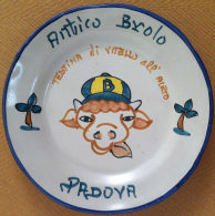 Piatto Buon Ricordo - Padova - Antico Brolo - Testina - R 1996 - PRESENTAZIONE - Obj. 'Souvenir De'