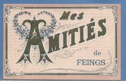 41      MES AMITIES DE FEINGS       TIMBREE ECRITE  BON ETAT 2 SCANS - France