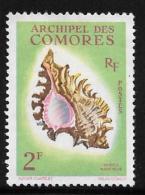 Comoro Islands, Scott # 50 Unused No Gum Sea Shell, 1962 - Comoros