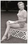 Sexy MARILYN MONROE Actress PIN UP PHOTO Postcard - Publisher RWP 2003 (116) - Artistes
