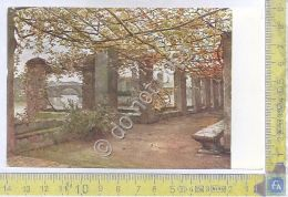Cartolina - Postcard - Illustrata- Ospizio San Luigi  - Acquarelli Roesler - Unclassified