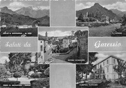 Cartolina - Postcard - Saluti Da - Garessio - Vedutine - Italia