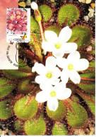 Australia 2013 Maxicard Scott #3968 60c Drosera Lowriei, Butterfly Carnivorous Plants First Day Issue - Maximumkaarten