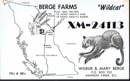 Chat, Wildcat On Old QSL Card From Wilbur & Mary Berge, Dawson Creek, BC, Canada (1968) - CB