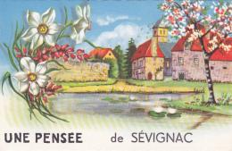 Cpa-22- Sevignac --une Pensée De ...-edi Picard N°1150 - Francia