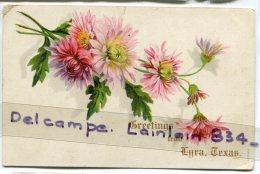 - Greetings From Lyra - Texas, Flowers, Rare, Splendide, Stamps, 1920, écrite, BE, Scans. . - Etats-Unis
